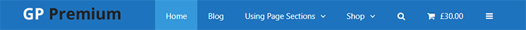 Navigation menu positioned inside the website header section
